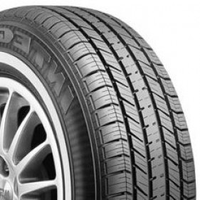 Goodyear Integrity